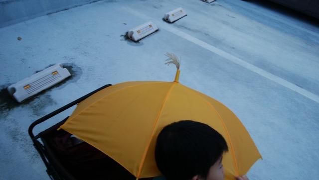 傘の先からススキが生えていた話〜男の子の育て方〜