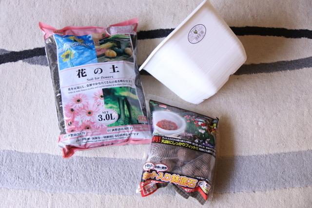 苗を鉢に植え替える方法&コツ〜100均(ダイソー)花の土・鉢底石を購入〜
