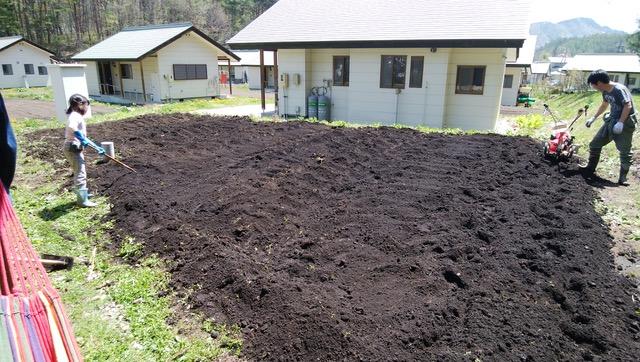 市民農園2年目のGW。畑作業開始。